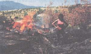 Clean-up day: burning large pieces of debris