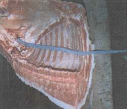 Figure 9.  Separating the ribs from the chops.