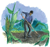Drawing of man tending garden