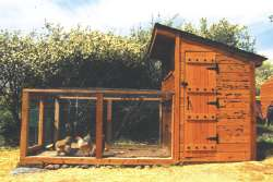 A side view showing the finished chicken coop with its door for my entry