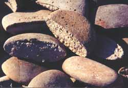 Cultured stones, made of pumice and portland cement, weigh about half as much as river rocks.