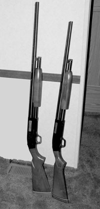 20 gauge pump shotguns, both Mossberg's affordable Model 500. Left has 28-inch barrel, 24-inch barrel on the right.