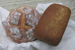 Anadama and rustic breads