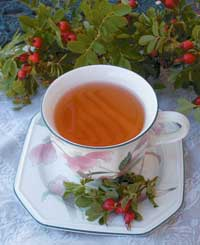 Rose hip tea is a tasty, nutritious beverage that can be made from fresh or dried hips. This cup was made from freshly gathered wild rose hips.