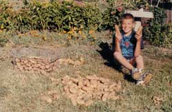 David enjoys the potato harvest after the first killing frost.