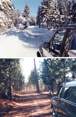Winter or summer, the 8-mile drive to the cabin site was one of beauty.