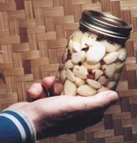 A quart of pickled garlic is worth its weight in gold. It's so easy to make, yet so good.