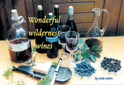 Wonderful wilderness wines by Linda Gabris
