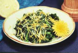 A 'mess' of cooked dandelion greens drizzled in olive oil and sprinkled with dandelion flower petals. Mmmm... wonderful flavor with no bitterness. These greens were cooked for five minutes in only one pot of water because the least bitter greens were selected for use.