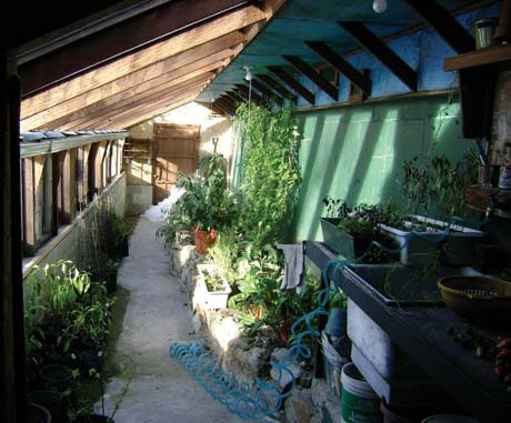 The completed greenhouse at the end of the growing season. Plants are brought inside to extend their production time.