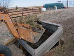 Manure is placed in the hotbed where it will decay, providing heat for the seedlings.