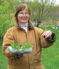 My mother, Susan Nunan, showing off the marigold seedlings that she started in halved plastic milk jugs.
