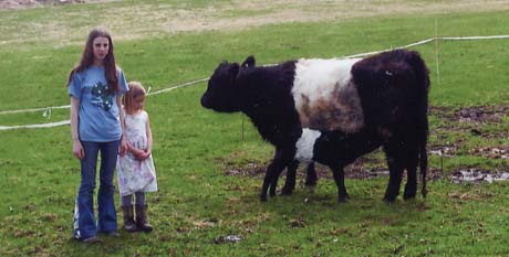 Kayla and Kennedy show off Kayla's Belted Galloway cow that she won through a 4-H essay contest.