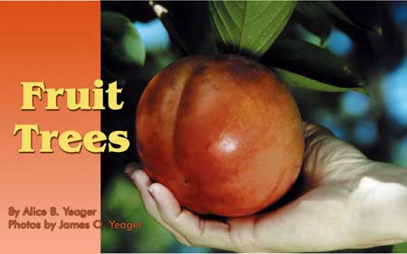 Fruit trees. By Alice B. Yeager. Photos by James. O. Yeager