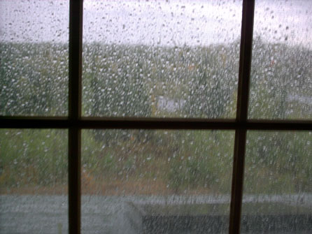 rainy-day-001-copy.jpg