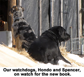 Our watchdogs, Hondo and Spencer, on watch for the new book.