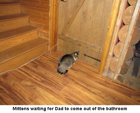 Mittens-waiting