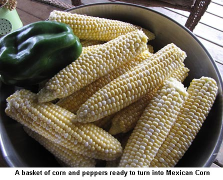 Peppers-corn_9536