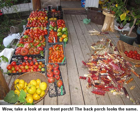 Porchtomatoes_9763
