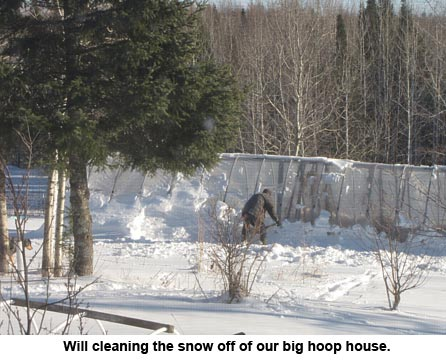 snowhoophouse_1310