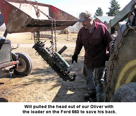 Oliver-head_1586