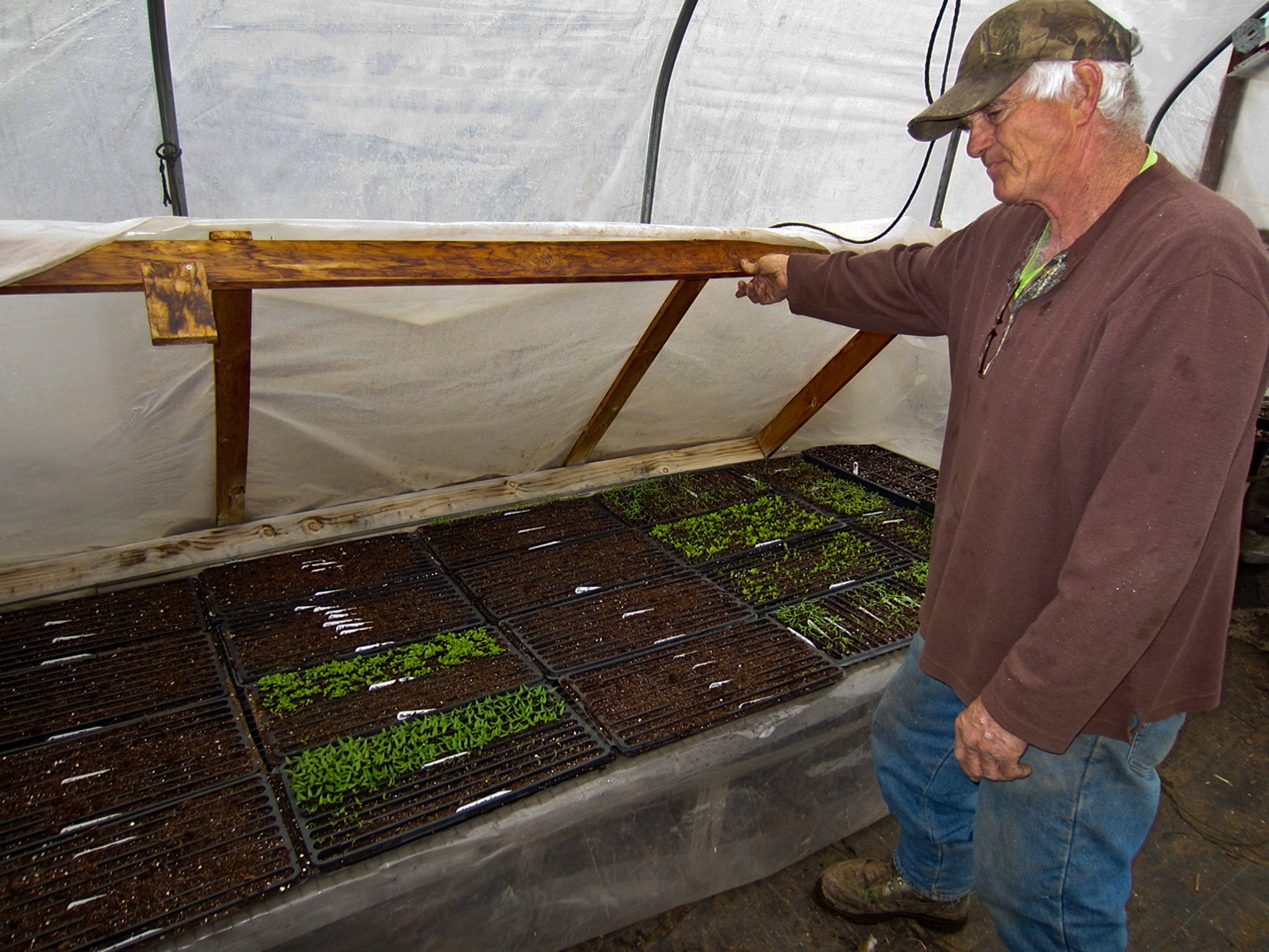 Germinating Seeds For the Planting Season