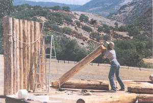 Raising the log walls