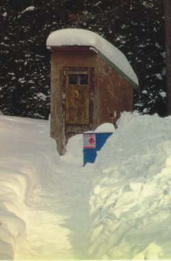 Every home should have an outhouse for emergency use