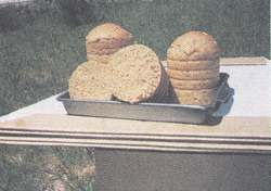 Loaves of solar-baked bread.