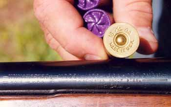 It should say on the gun what ammunition it takes. Here, 16 gauge shells are the right ammo for 16 gauge Winchester shotgun.