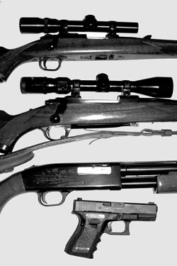 An example of an effective four-gun battery today. From top: .22 rifle (Ruger 77/22). .30-06 'Deer rifle' (Ruger 77). All-around 20 gauge shotgun (Mossberg 500). Defensive pistol (9mm Glock 19).