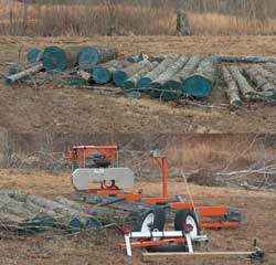 Sawmill on the ground, logs staged, ready to start cutting