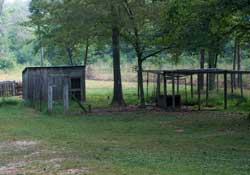 The original chicken house