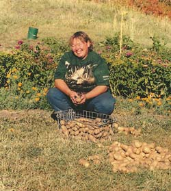 Some of these homegrown Yukon Gold potatoes will be used for holiday meals in the Clay household.