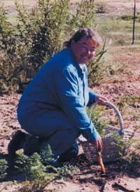 Me in early winter garden, harvesting the last carrots before the ground freezes. They ignore frost and light freezes. (Bob Clay photo)