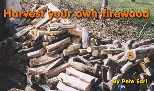 Harvest your own firewood By Pete Earl