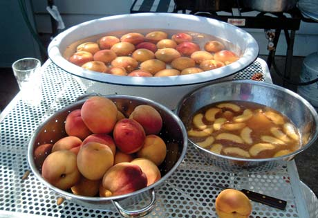 A group buy of eight bushels of locally grown peaches makes the cost easier to bear, and with several hands helping, the work goes quickly, too.