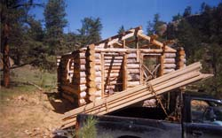 The spruce purlins are in place. They and the pine boards in the back of the truck were from an old friend's property. I ran his sawmill for him in exchange.