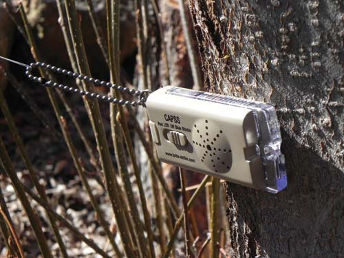 Small camp security - Backwoods Home Magazine