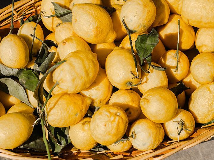Lemons: the versatile fruit - Backwoods Home Magazine