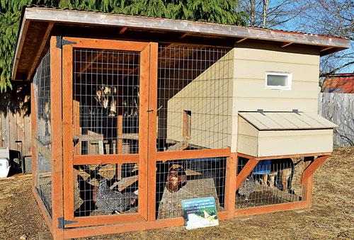 This kid-friendly chicken coop has outside access to eggs, feed, and water.