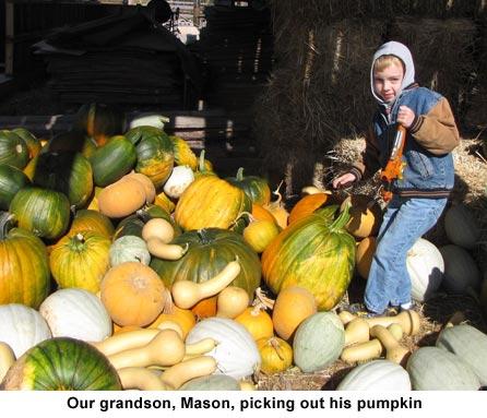 Mason-pumpkins