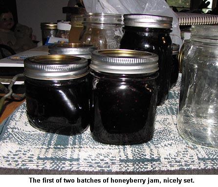 Honeyberryjam_9200