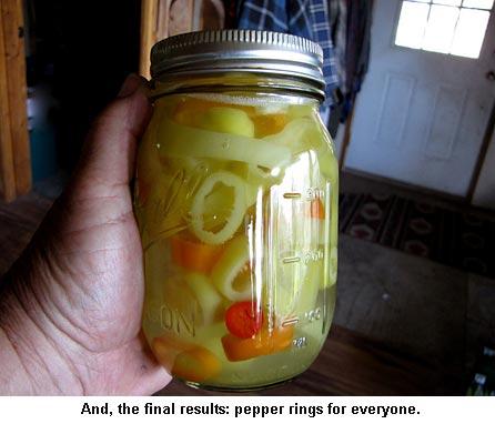 Pepper-rings_9304