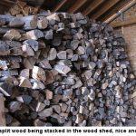 Woodshed_6254