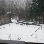 Snow_6532