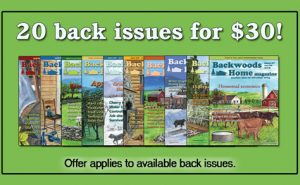 20 for $30 Back Issue Special